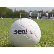 SENI Cup при поддержке «ТД Минерал»